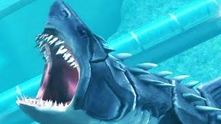getlinkyoutube.com-Jurassic World: The Game - Megalodon / Max Level / Final Form