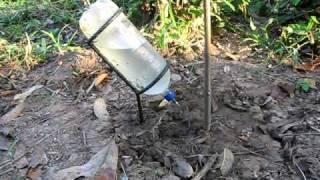 getlinkyoutube.com-riego por goteo con botellas recicladas jgaldamezperez@yahoo.com