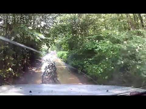 Suzuki grand vitara и болотные колии
