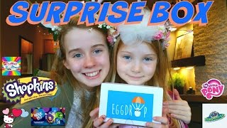 getlinkyoutube.com-SHOPKINS MLP CRASHLINGS - Subscription Box Surprise from EGGDROP with WHIFFER SNIFFERS