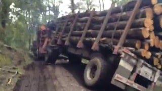"getlinkyoutube.com-Camiones forestales panguipulli ""dia complicado"""