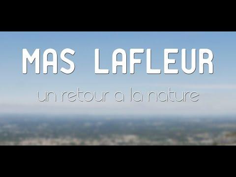La famille Lafleur : un chemin en conscience