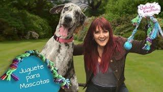 getlinkyoutube.com-Juguete para Mascotas con trapitos :: Chuladas Creativas