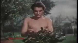 Adam and Eva Italy Full Movie 1983 dc 1