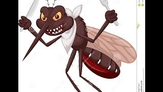 getlinkyoutube.com-Zika, Dengue, Chikungunya - Metralhadora (Paródia) - Anne Karolynne