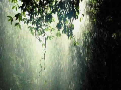 Relaxing Rain Music With Harp