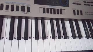 Oye oye Arabic song on Keyboard Piano Casio