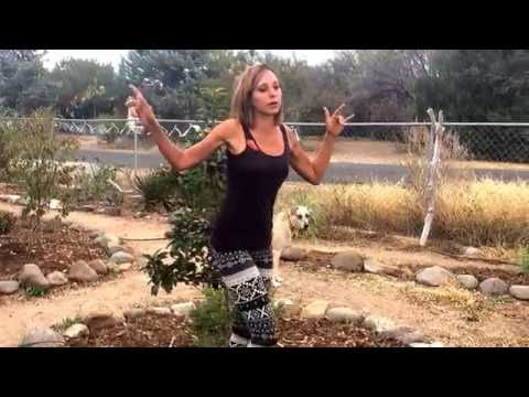 A Tour of the Doublewide Oasis: Central AZ Backyard Permaculture Garden ft. Dog Holes