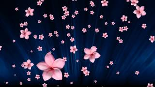 getlinkyoutube.com-#004 Pink Flowers Fall in Blue