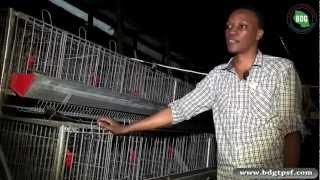 getlinkyoutube.com-BDG Success story 11 (Poultry Norogoro)