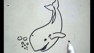 How to Draw a Whale (Cara Menggambar Ikan Paus)