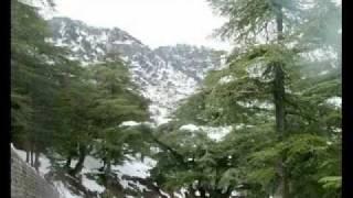 أجمل بلد في العالم  الجزائر  Algeria The most beautiful country in the world