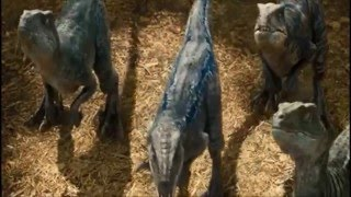 getlinkyoutube.com-Jurassic World: Raptor training --HD Qaulity