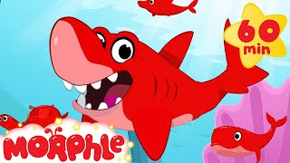 getlinkyoutube.com-Shark, Dolphin, Turtle, and Whale Morphle shorts +1 hour Morphle kids compilation)