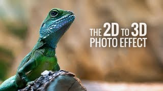 Amazing 2D to 3D Photo Effects