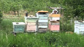getlinkyoutube.com-Српска квадратна пчеларска дизалица