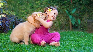 getlinkyoutube.com-Puppies and Babies Playing Together Compilation 2014