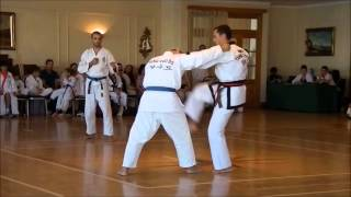 getlinkyoutube.com-Masters Demo Tang Soo Do