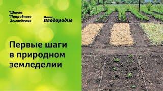 Первые шаги в природном земледелии