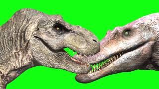 getlinkyoutube.com-JURASSIC PARK III T Rex vs Spino (Tyrannosaurus Spinosaurus dinosaur fight animation green screen)