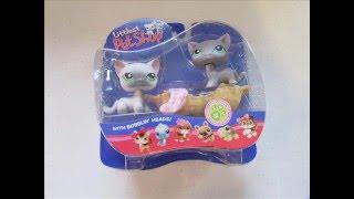 getlinkyoutube.com-Shorthair cats and their sets / Kotki shorthair i ich zestawy