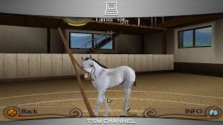 getlinkyoutube.com-My Riding Stables : Life With Horses (part 6) (Horse Game)