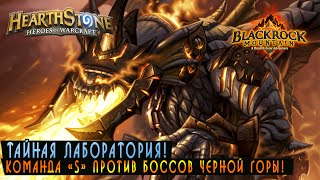 getlinkyoutube.com-Hearthstone: Тайная Лаборатория! [Хартстоун]