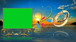 Beautiful Wedding Animation Background Video Cool Green Screen Effects