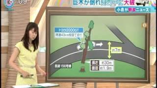 getlinkyoutube.com-トヨタ2000GT大破  特ダネ