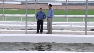 getlinkyoutube.com-Algae Farm