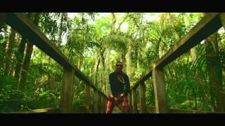 WizKid Feat. Femi Kuti - Jaiye Jaiye (Official Video) width=
