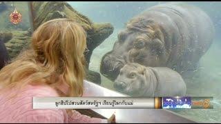 getlinkyoutube.com-ลูกฮิปโปสวนสัตว์สหรัฐฯเรียนรู้โลกกับแม่