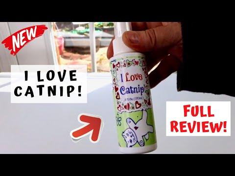 😍 I LOVE CATNIP!  -  Pet MasterMind Catnip Spray  - Review ✅