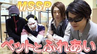 getlinkyoutube.com-【MSSP】ペットショップでネコと戯れてみた MSSPのオールナイトニッポンw#16