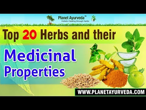 Top 20 Herbs & their Medicinal Properties - Health Benefits