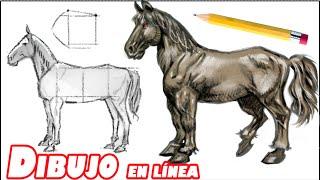getlinkyoutube.com-Como dibujar un caballo (explicado paso a paso)