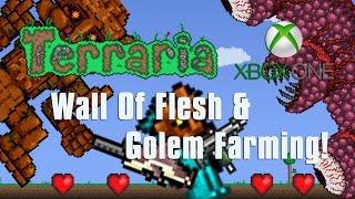 Terraria Xbox One Let's Play -  Wall OF Flesh/Golem Farming! [29]