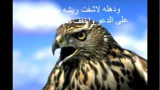 getlinkyoutube.com-حامد الضبعان - انا على المقناص
