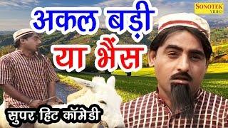 शेख चिल्ली की सुपर हिट कॉमेडी : अकल बड़ी या भैंस | Akal Badi Ya Bhens | New Comedy Darama |