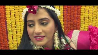 Dhruv & Vibha | Wedding Highlight | Jaipur india