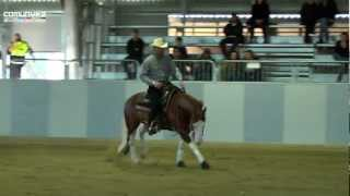 getlinkyoutube.com-NRHA Winter Trophy 2011 - GENNARO LENDI-COLONELS SHINING GUN