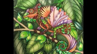 getlinkyoutube.com-Magical Jungle Collection Johanna Basford SGG 10