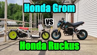 getlinkyoutube.com-Honda Grom VS Honda Ruckus Part 2