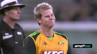 Top 6 Classic Cricket Crowd Catches