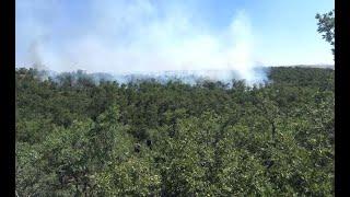 Sungurlu ve Alaca arasında orman yangını
