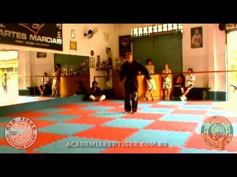 HAPKIDO SUNGJAKWAN 2012 - Academia Red Tiger   Praia Grande
