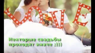 getlinkyoutube.com-Свадебные курьезы 2015