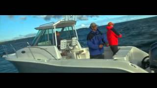 26 Foot Walkaround Fishing Boat by Stiper Boats