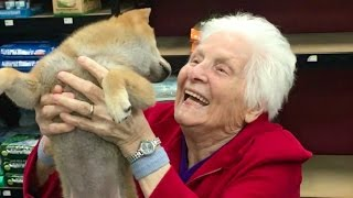 GRANDMA'S FIRST TRIP TO THE PET STORE | Ross Smith width=