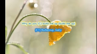 Build me up Buttercup by The Foundations play along with scrolling guitar chords and lyrics